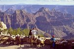 Grand_canyon1